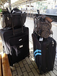 Luggage for two